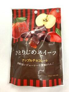 鈴木栄光堂 ひとりじめスイーツアップルチョコレート 72g×6袋