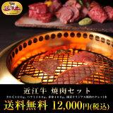 牛肉総内容量1.1kgバーベキューに最適!近江牛焼肉セットお中元10P18Jun16