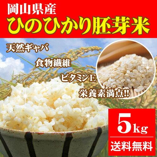 新米 5kg ひのひかり胚芽米 30年岡山県産 送料無料