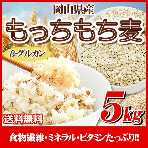 29年産 岡山県産大麦100%もっちもち麦5kg