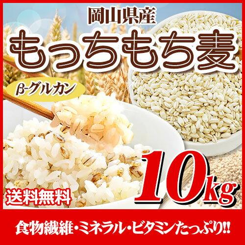 29年岡山県産大麦100%もっちもち麦10kg【5kg×2袋】
