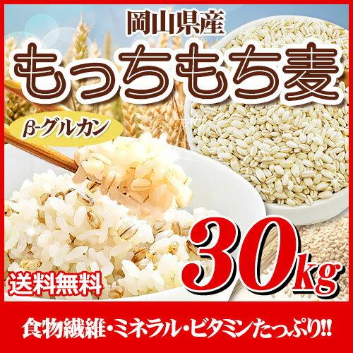 29年岡山県産大麦100%もっちもち麦30kg【5kg×6袋】