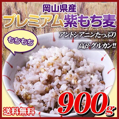 29年岡山県産プレミアム極小粒紫もち麦ダイシモチ900g