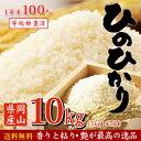 29年産 岡山県産ひのひかり10kg【5kg×2袋】 ヒノヒカリ 10kg送料無料