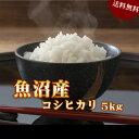 米 お米 5kg 魚沼産 コシヒカリ 令和元年産 送料無料