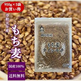新麦 国産 もち麦 ダイシモチ (950g×5袋) チャック付 令和元年岡山県産 お買い得パック