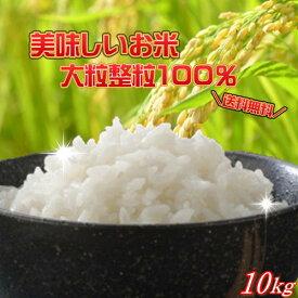 30年産 大粒業務用米10kg