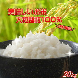 30年産 大粒業務用米20kg【10kg×2袋】