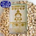 新麦 キラリもち麦 5kg (5kg×1袋) 令和3年 岡山県産 国産100% もち麦 送料無料