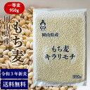 新麦 もち麦 キラリもち麦 950g チャック付 令和3年 岡山県産 送料無料 国産