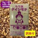 【訳あり】もち麦 岡山県産 ダイシモチ 5kg (5kg×1袋) 紫もち麦 送料無料