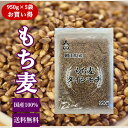 新麦 もち麦 岡山県産 ダイシモチ (950g×5袋) お買い得パック 令和3年産 送料無料
