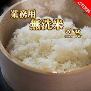 業務用 無洗米 5kg (5kg×1袋) 送料無料