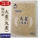 国内産 大麦(丸麦) (950g×5袋) お買い得パック 送料無料