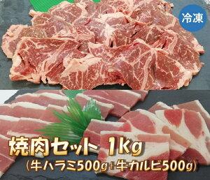 焼肉セット 1kg (牛カルビ・牛ハラミ 各500g) 送料無料 【冷凍便発送】【代金引換不可】