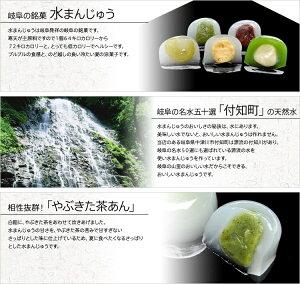 岐阜の銘菓水まんじゅう