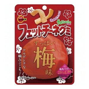 ブルボン フェットチーネグミ すっぱい梅味 50g 10コ入り 2020/05/26発売 (4901360339389)