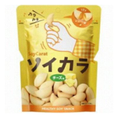 大塚製薬 ソイカラ チーズ味 27g 6コ入り