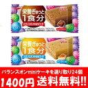 (全国送料無料)バランスオンminiケーキ 選り取り24個 (2種類×12個) メール便