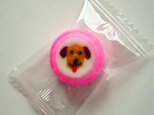 ゴールデンレトリバー犬飴キャンディー 50個入 1袋 個包装グッズ プレゼント 贈り物  犬 ドッグ ギフト かわいい