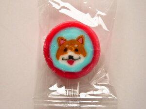 柴犬飴キャンディ 250個入 1袋 個包装 柴犬キャンディー グッズ プレゼント 贈り物  犬 ドッグ ギフト かわいい