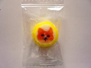 コーギー犬飴キャンディ 50個入 1袋 個包装 グッズ プレゼント 贈り物  犬 ドッグ ギフト かわいい