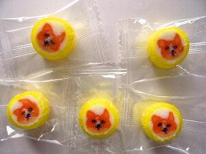 コーギー犬飴キャンディ 250個入 1袋 個包装 グッズ プレゼント 贈り物  犬 ドッグ ギフト かわいい