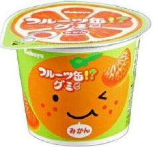 【心ばかりですが…おまけつきます☆】カバヤ食品フルーツ缶グミ50g×12個入