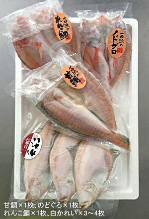 【中身形態】日本海厳選地魚一夜干「恵比寿」(えびす)