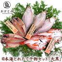 お中元 ギフト 干物ギフト のどぐろ入【送料無料】日本海とれたて干物セット「大黒」(だいこく)《のどぐろ・あじ・…