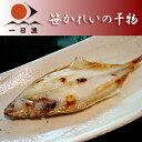 笹かれいの干物 1尾(150-160g)【RCP】【岡富商店】【kf】