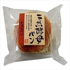 送料無料 食祭館 天然酵母パン チョコパン 12個