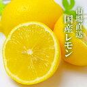 \ 国産レモン / 5kg JA全農 など 市場から直送 安心 安全 ノーワックス 防腐剤不使用(減農薬)蜂蜜漬け 塩レモン …