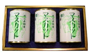 岡山 特産 マスカットの缶詰3缶セット【吉英フルーツ】【楽ギフ_包装】【楽ギフ_のし】【楽ギフ_のし宛書】【楽ギフ_メッセ】【楽ギフ_メッセ入力】【楽ギフ_名入れ】