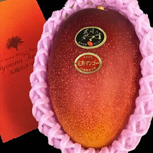 送料無料 宮崎産 太陽のタマゴ 完熟マンゴー 赤秀 2Lサイズ 1玉入り ギフト 母の日 プレゼント