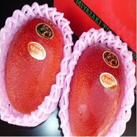 【スーパーセール期間10%off】送料無料 宮崎産 太陽のタマゴ 完熟マンゴー 赤秀 2Lサイズ 2玉入り ギフト 母の日 プレゼント