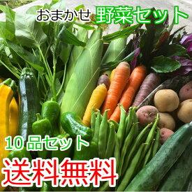 送料無料 野菜セット 10品セット おまかせ野菜セット 野菜 詰め合わせ お試し 野菜セット 野菜セット 西日本 野菜セット フードロス 岡山 複袋 福袋 送料込
