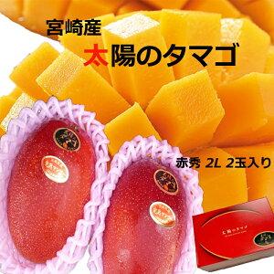 母の日 マンゴー 送料無料 宮崎産 太陽のタマゴ 完熟マンゴー 赤秀 2Lサイズ 2玉入り マンゴー ギフト 母の日 プレゼント