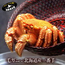 《条件つき送料無料》『特選 北海道産 毛蟹』(堅蟹 3特ランク:400g) 蟹 毛ガニ カニ かに 毛蟹 ケガニ けがに オホ…