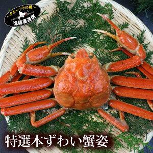 『特選本ずわい蟹:姿800g前後』ズワイガニ ずわいがに ズワイ蟹 ズワイ 姿 本ずわい 本ズワイ 母の日 父の日 内祝い