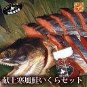 ご予約商品 北海道産 送料無料 ギフト『徳川献上鮭イクラ ギフトセット』(西別鮭寒風造り輪切り)(いくら醤油漬け:210g…