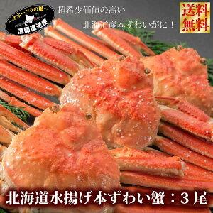 ずわいがに ズワイガニ 送料無料 『特選本ずわい蟹:ボイル姿3尾セット』(1,5キロ前後)北海道産 ズワイ蟹 ズワイ蟹 【#元気いただきますプロジェクト】