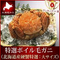 『北海道特選ボイル毛ガニ』(堅蟹一番手:大サイズ500-550g前後)【お歳暮】【年越し】