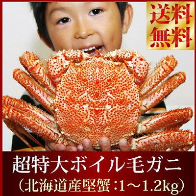 【送料無料プレミアム市場】『超特大ボイル毛ガニ』(北海道産:極大1-1.2kg前後)