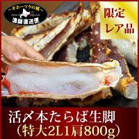 【送料無料-数量完全限定品】『超特大活〆本たらば蟹』(3-3.5kg:約2肩前後)【楽ギフ_のし】【ギフト】