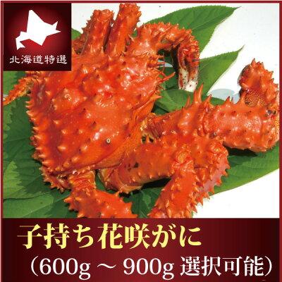 『浜茹で花咲蟹(メス)』(北海道根室産:600g前後)