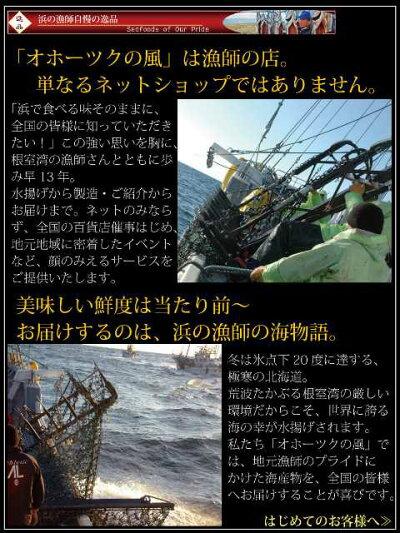タラバたらば送料無料『超特大ボイル本タラバ蟹』(身入り超特撰1肩1.3kg脚)タラバ蟹たらば蟹たらばがにタラバガニ6Lたばらタバラのしギフト贈答用メッセージカード対応海鮮魚