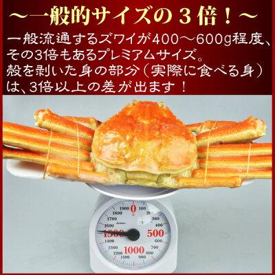 【12月発送ご予約受付中】『ボイル本ずわい蟹:姿800g前後』【お歳暮】【年越し】