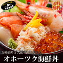 北海道 海鮮丼 刺し身 送料無料 ギフト 『オホーツク海鮮丼セット:A(2人前)』いくら!特大ほたて!特大ぼたんえび…
