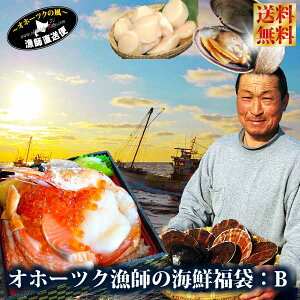 ご予約 送料無料 北海道 海の幸『新春★オホーツク漁師の海鮮福袋:DXセット』ご自宅用にもご贈答用にも最適の北海道海鮮8-10種詰め合わせ♪カニ イクラ ホタテ エビ かに いくら ほたて え